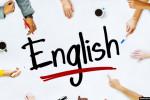 إجماع على تعزيز اللغة الإنجليزية في التعليم العالي